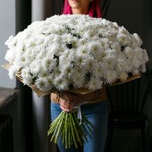 Букет 51 хризантема