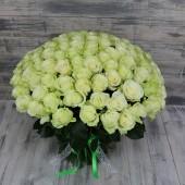 Букет 101 роза белая Эквадор премиум 60 см