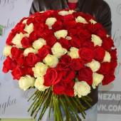 101 роза микс Эквадор 70 см