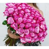 Роза фиолетовая Deep Purple