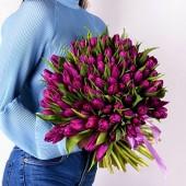 101 тюльпан фиолетовый