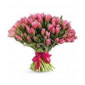 101 тюльпан розовый