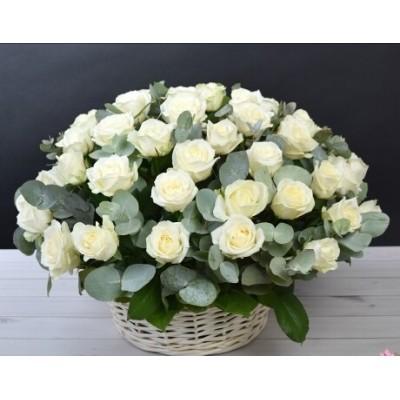 Корзина из 51 белой розы с зеленью