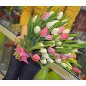 35 тюльпанов бело-розовый микс