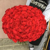 101 красная роза  Эквадор 60-65 см